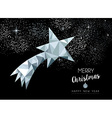 Merry christmas greeting card with silver star vector image