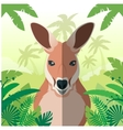 Kangaroo on the Jungle background vector image