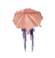 Watercolor painted umbrella vector image
