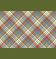 coloured plaid shirting diagonal seamless fabric vector image
