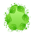 Green eco leaves label isolated on white vector image