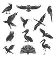 Stylized Birds Silhouettes Black Icons Set vector image