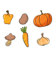 various vegetables vector image