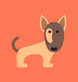 Flat icon on background pet dog pitbull vector image