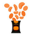 Pumpkin chips Packaging of vegetable chips vector image