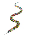 snake color vector image