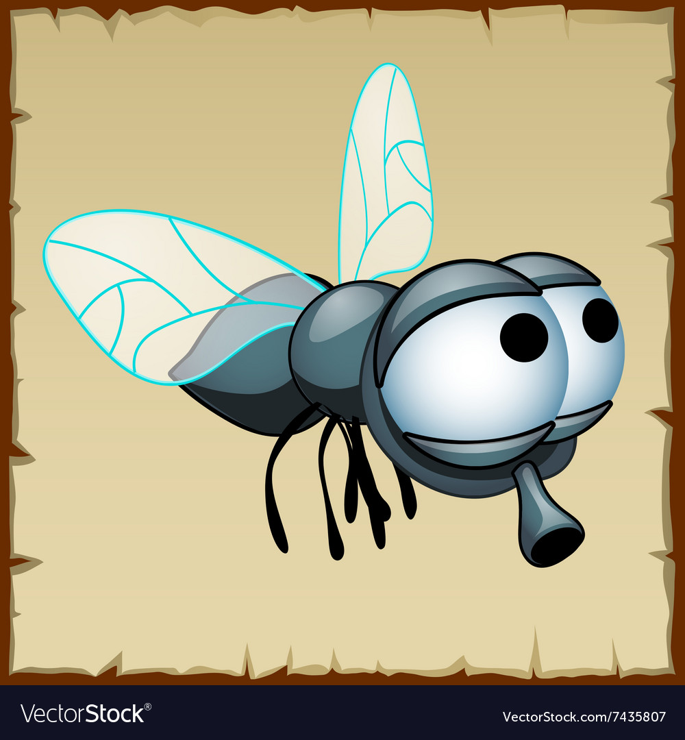 Gray fly with huge eyes funny insect vector