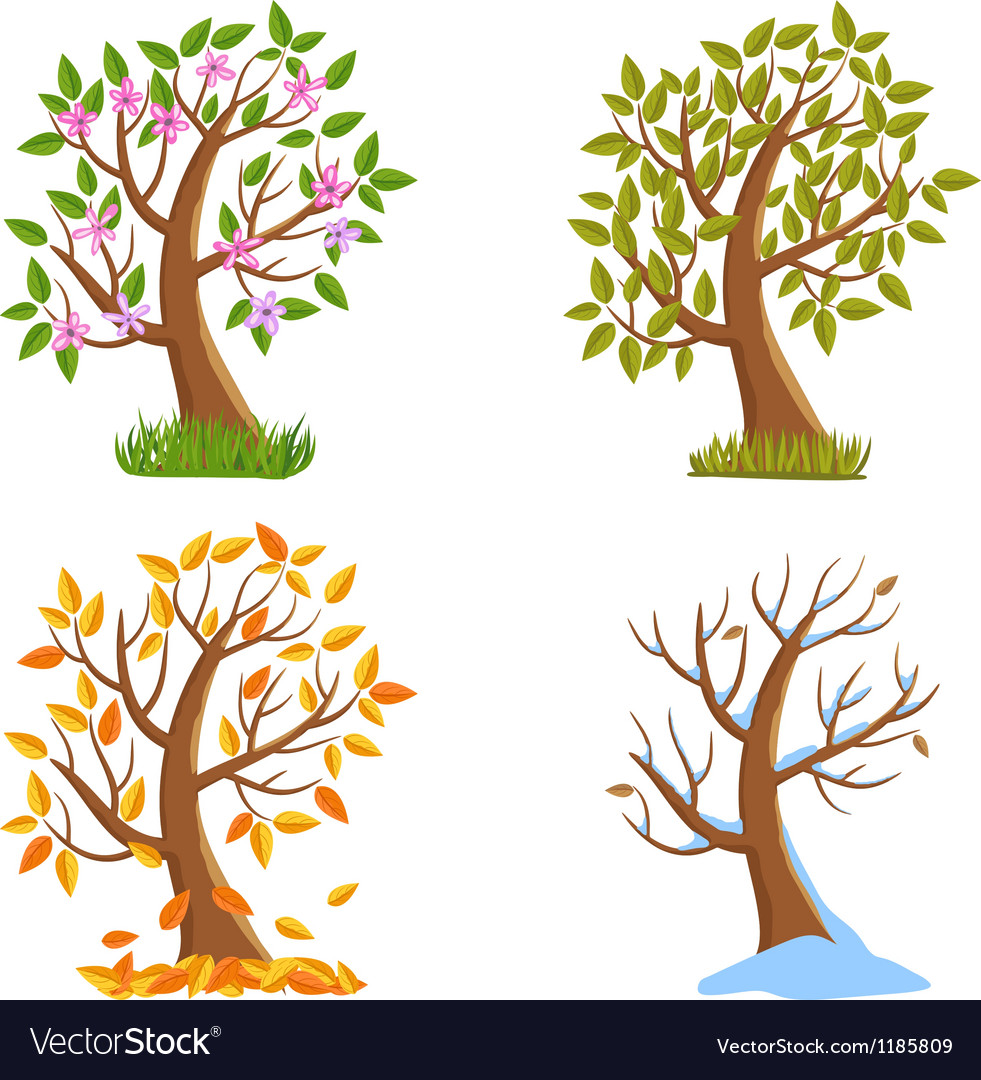 Season tree vector