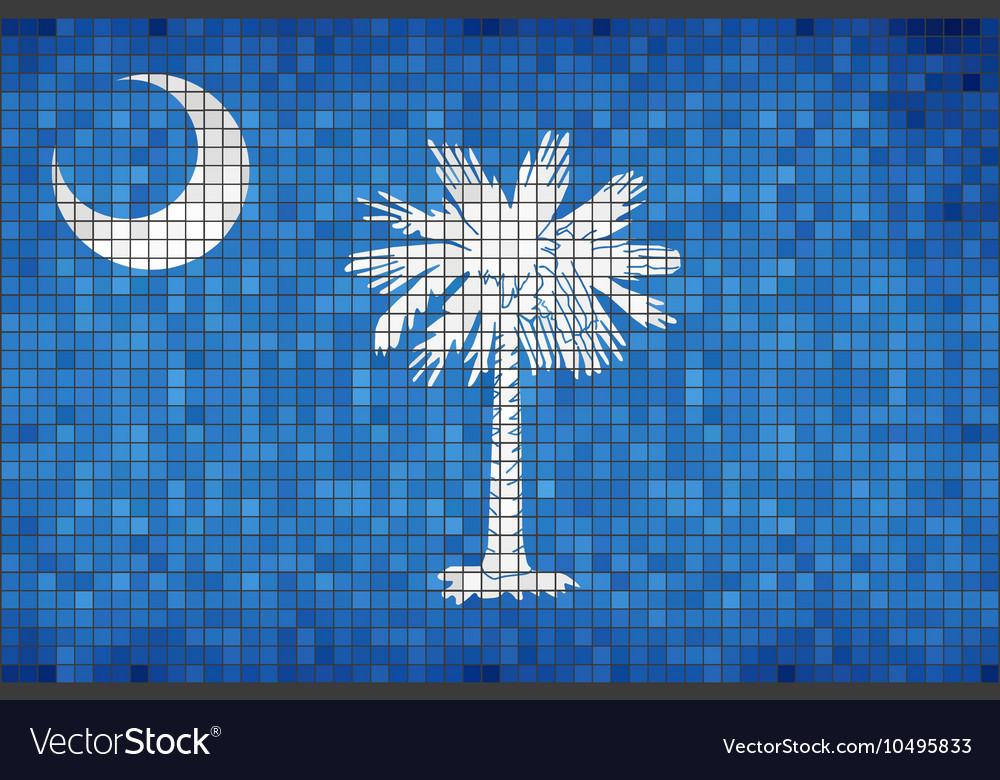 Abstract mosaic flag of south carolina vector