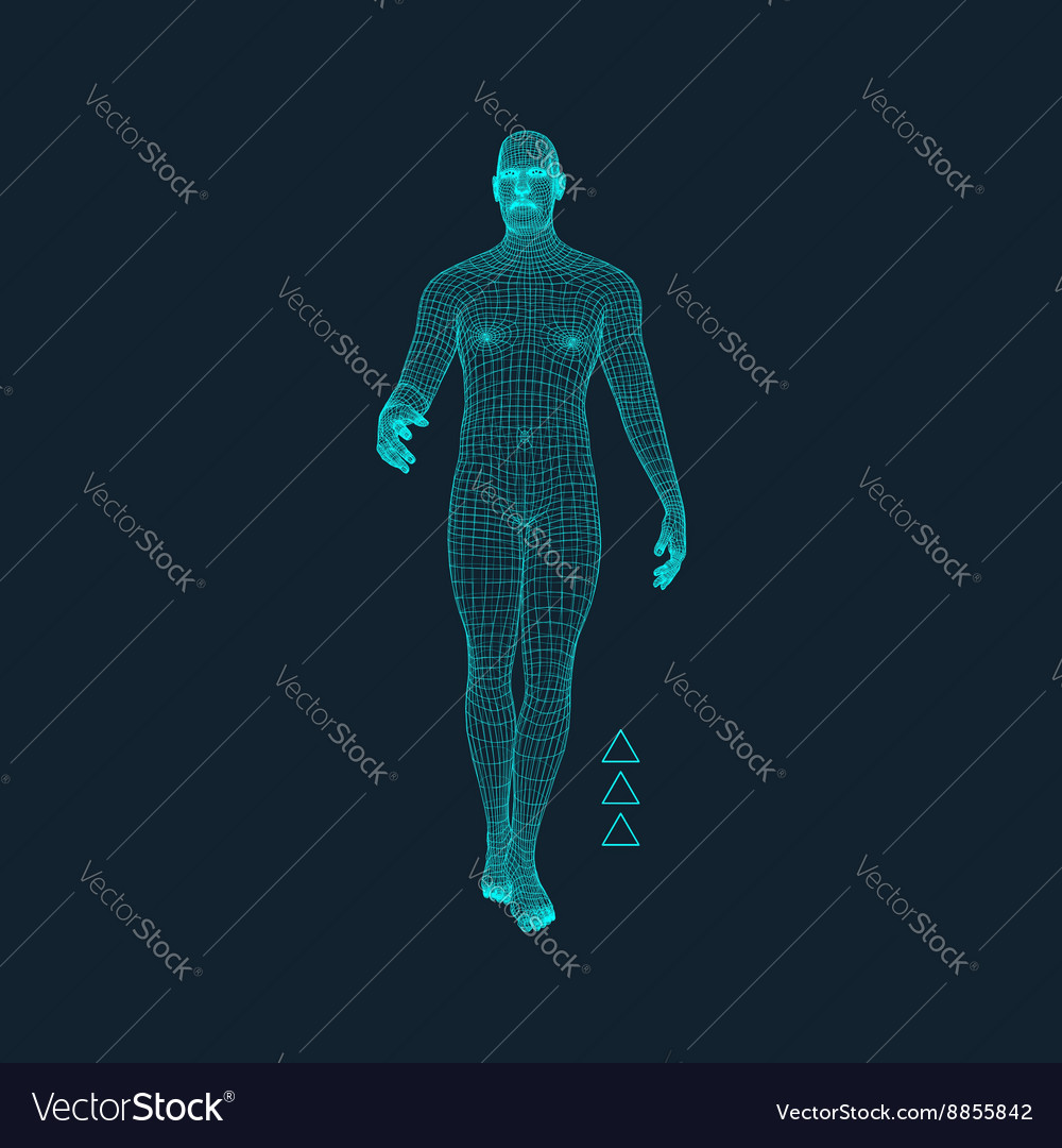 Man stands on his feet human body model vector