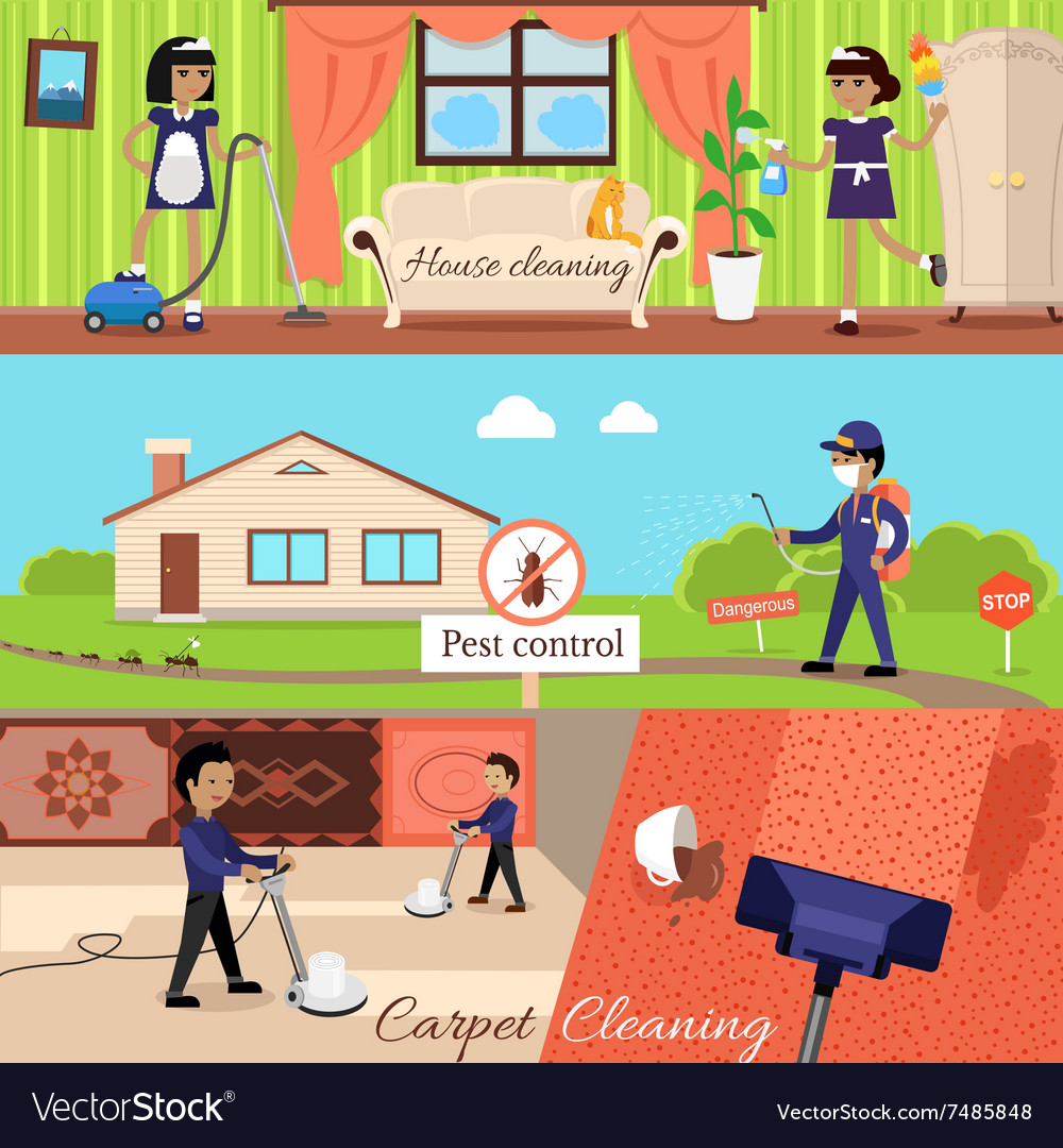 House cleaning and pest control vector