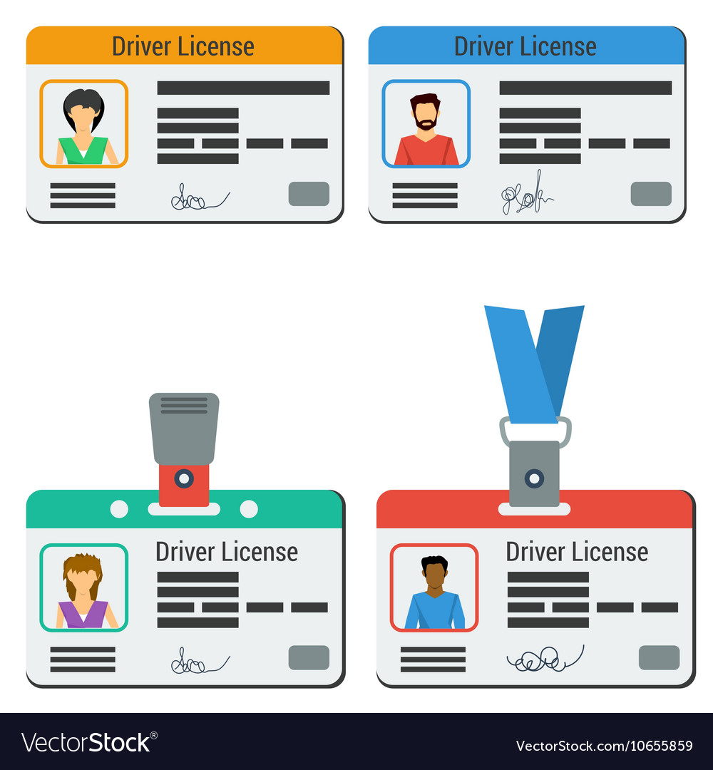Four colored drivers license vector