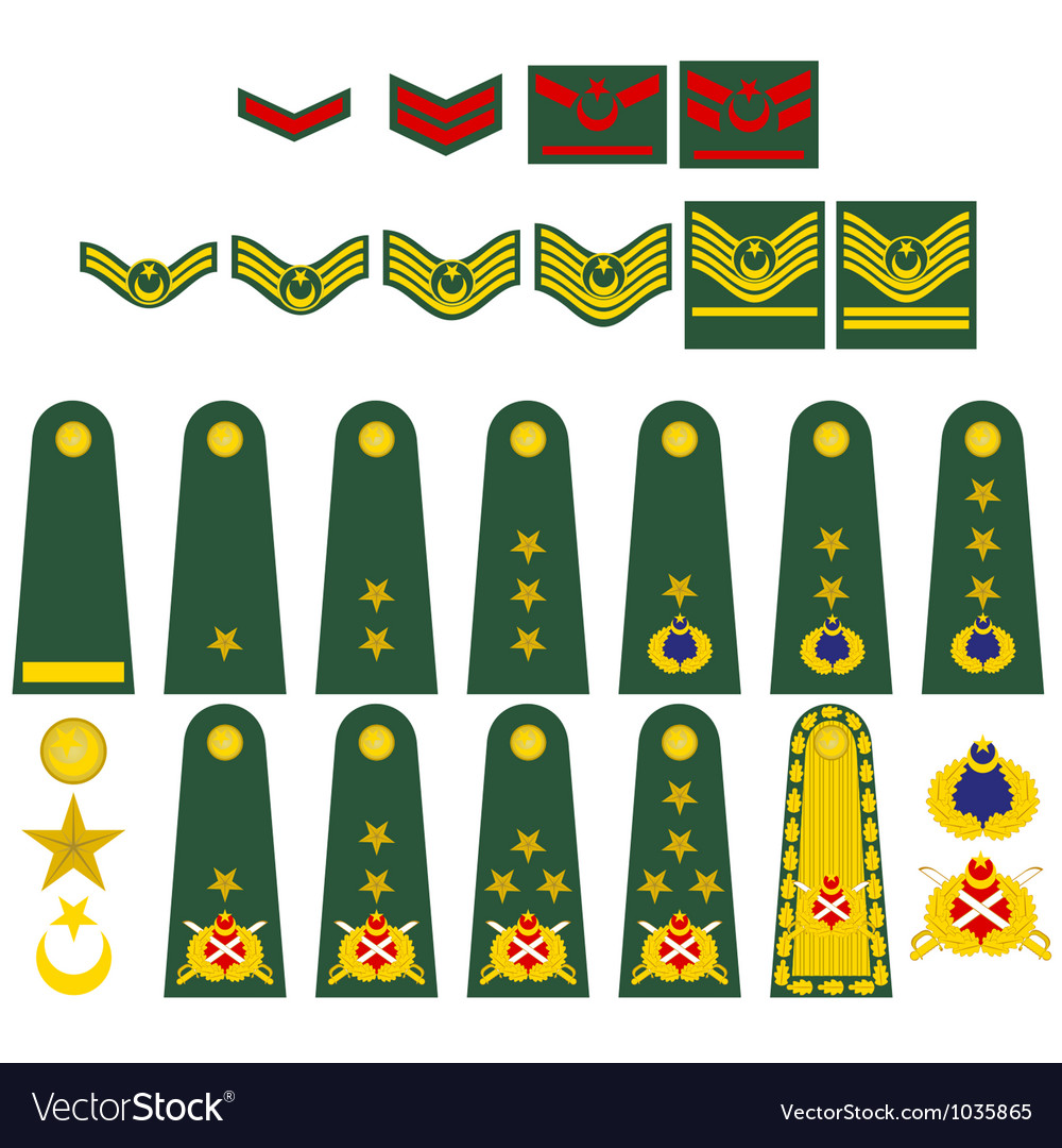 Turkish army insignia vector