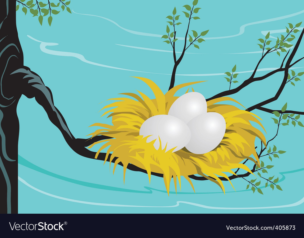 Egg nest vector