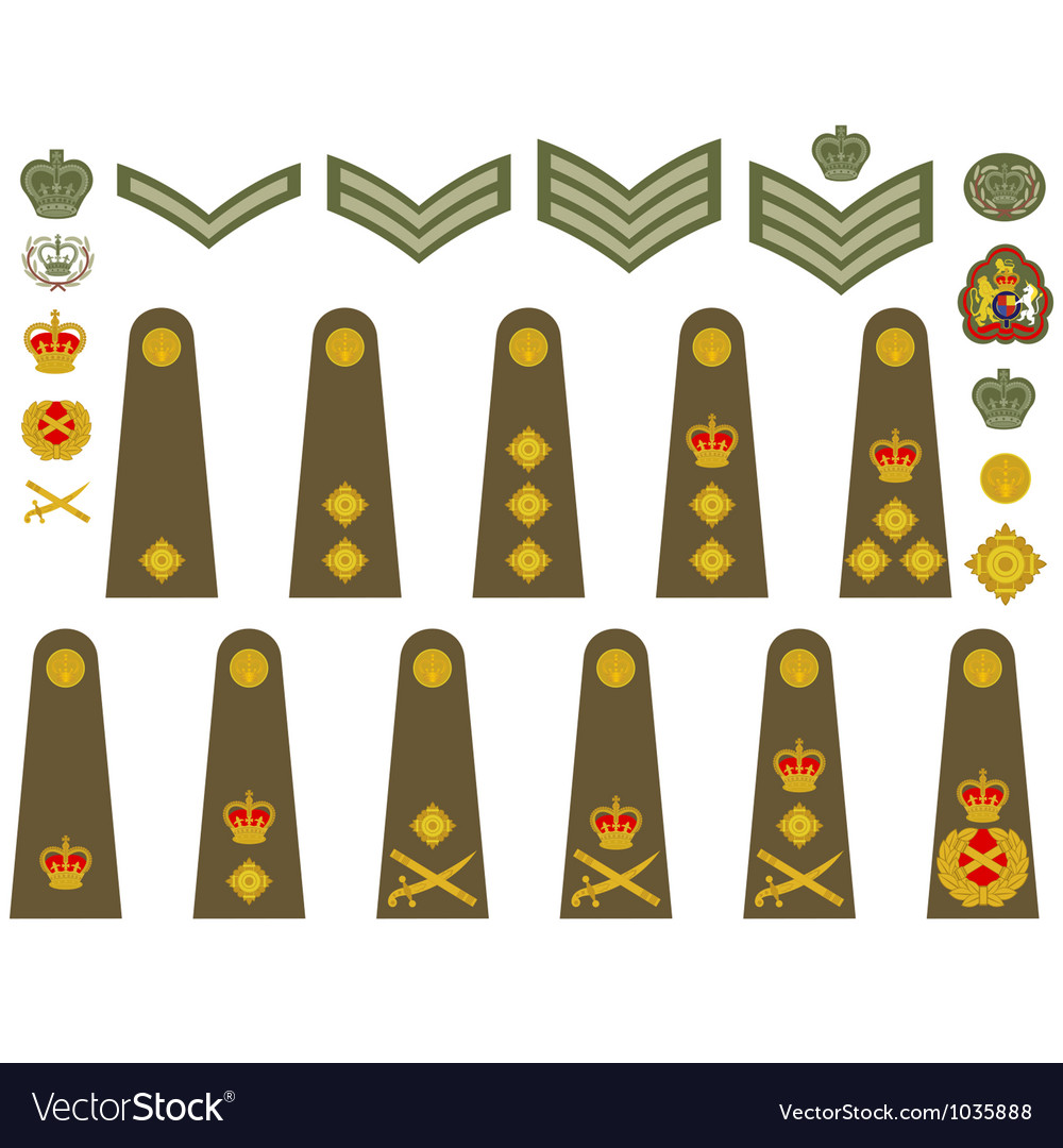 British army insignia vector