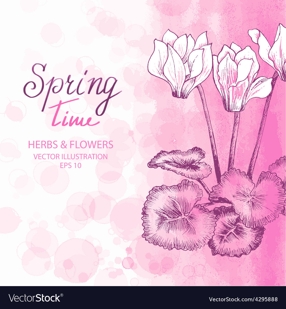 Pink cyclamen greetings card vector