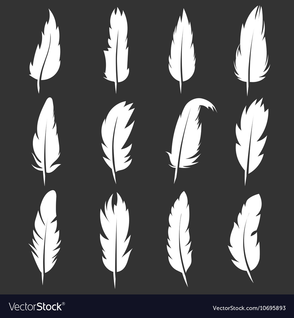 Feather vintage pens on black background vector