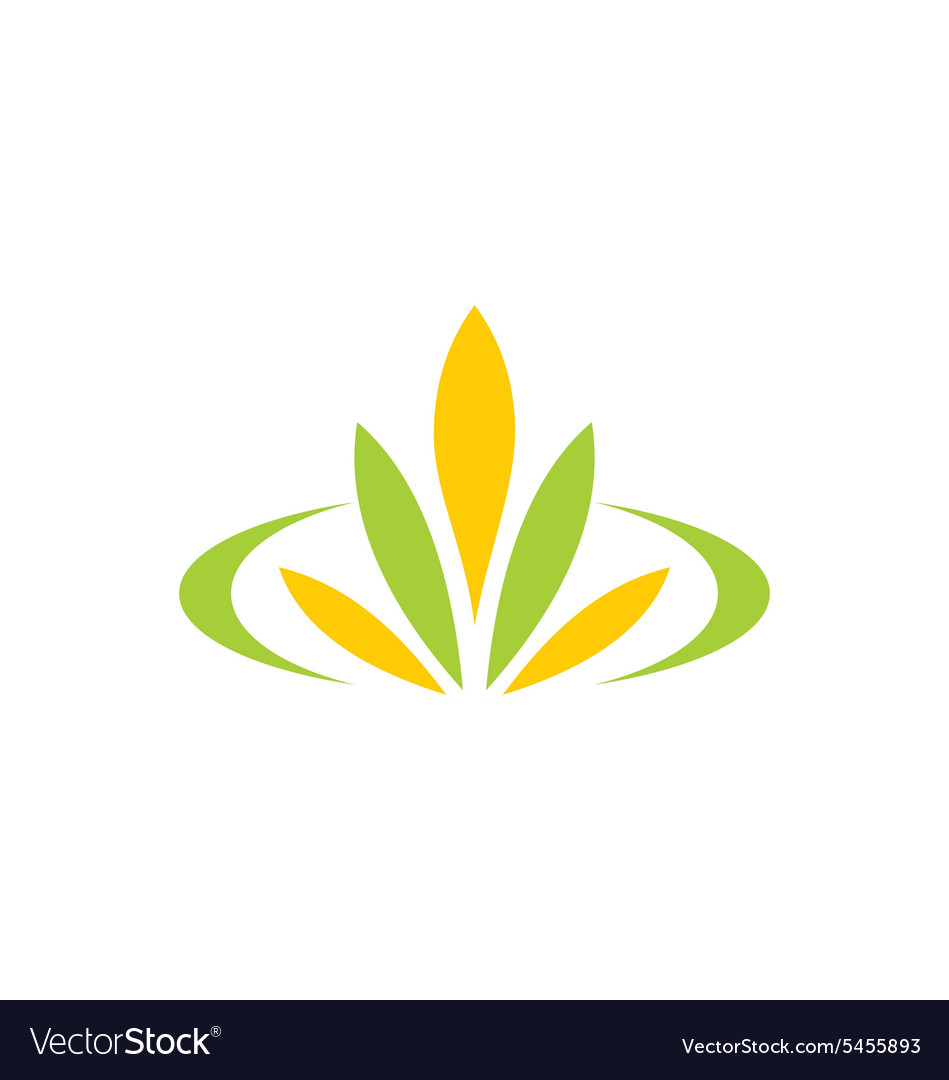 Green leaf flower plant spa logo vector
