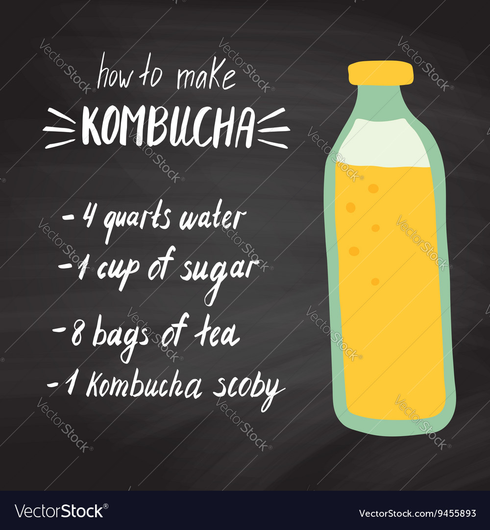Kombucha recipe 1 vector