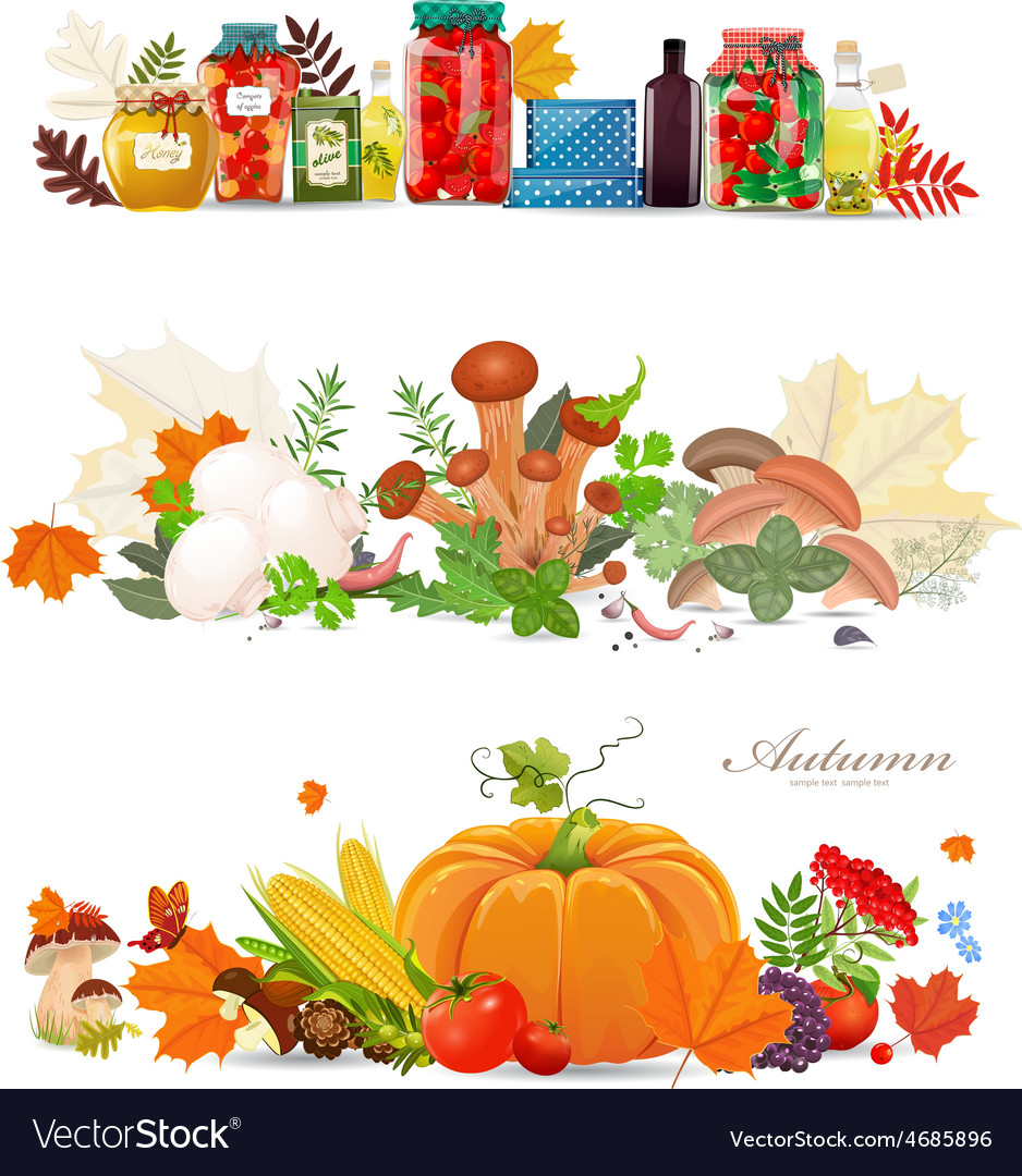 Collection borders with preserve food and vector