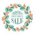 Christmas mistletoe branch vector image