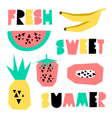 Summer Design Elements vector image vector image