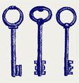 Keys sketch vector image vector image