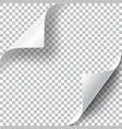 curly page corners set vector image