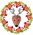 deer and floral wreath separated vector image