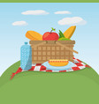 picnic food basket meaodw blanket vector image