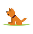 flat brown icon of dog vector image
