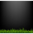 Black Background With Grass vector image vector image
