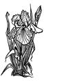 bouquet of irises vector image vector image