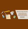 veterinary drugs and tools banner horizontal vector image