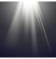 Light Effect Spotlight vector image