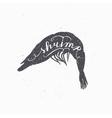 Hand drawn srimp hipster silhouette Handwritten vector image