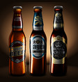 three bottles of beer with droplets of moisture vector image