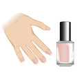 nails with fashion manicure vector image