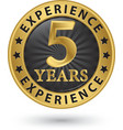 5 years experience gold label vector image vector image