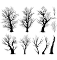 creepy tree vector image vector image