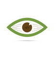 green eye icon vector image