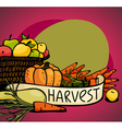 vegetables and fruits vector image