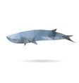 Whale isolated on a white backgrounds vector image