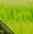 Low poly abstract background Green grass vector image