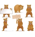 bear cartoon collection vector image