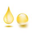 oil drops vector image