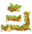 nuts frame 380 vector image vector image