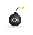 bomb color vector image