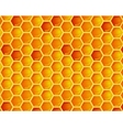 seamless pattern of honeycomb vector image