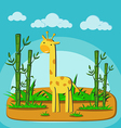 giraffe eating bamboo in forest vector image vector image